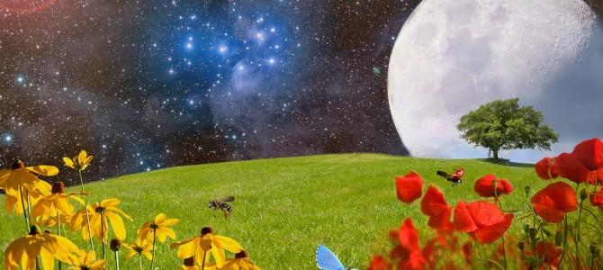 満月のシャーマニック一斉ヒーリング終了しましたm(__)m