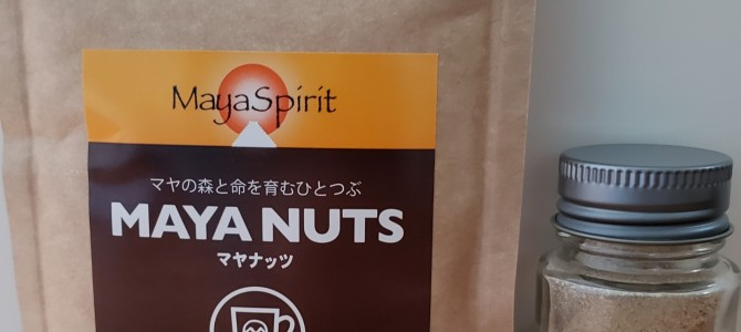 水曜日のつぶやき(*^-^*)マヤナッツ