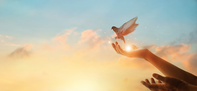日本神界サポート・春分の日イベント☆自由に未来を選択するために「霊の元つ国への蘇り」完全遠隔無料一斉ワークのご案内